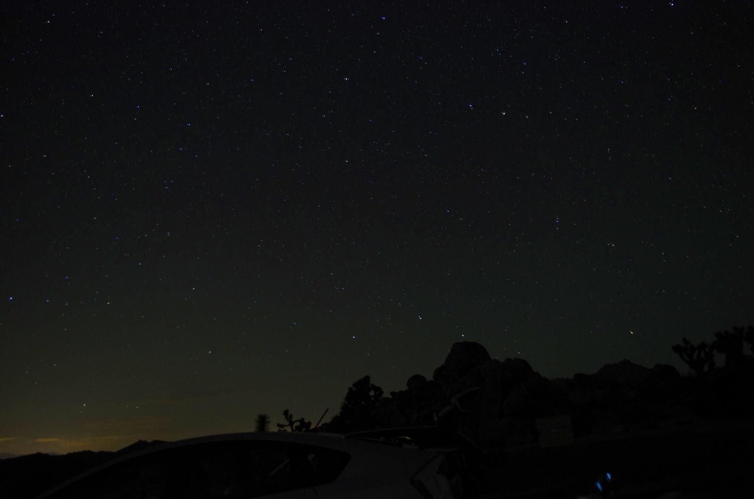Joshua Tree Night and Stars