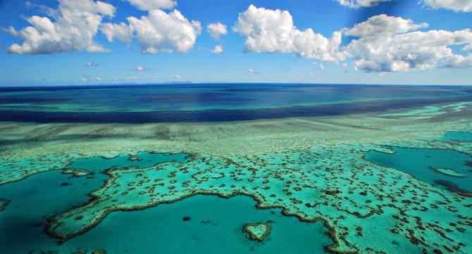 Heart Reef Queensland Australia